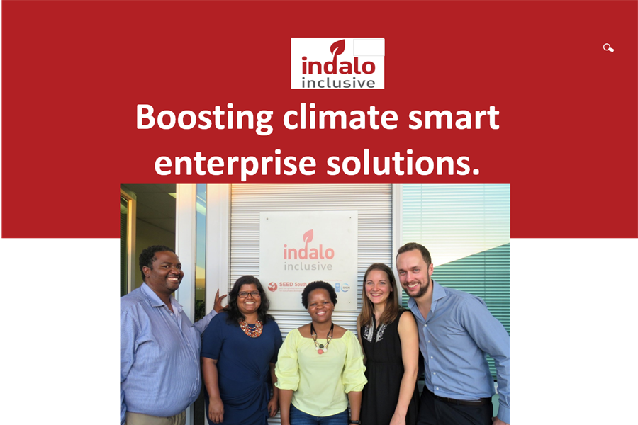 Reaping the Potential of Entrepreneurship for a Climate-Smart Inclusive Green Economy in South Africa
