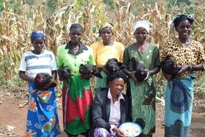 Women benefit from Sustainable Trade Project focusing on chicken